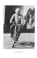 Эйнштейн. Его жизнь и его Вселенная — фото, картинка — 8