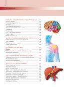 Анатомия и физиология. Большой популярный атлас — фото, картинка — 4
