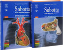 Sobotta. Атлас анатомии человека. В 2 томах (комплект из 2-х книг) — фото, картинка — 1