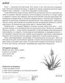 Комнатные растения (16 демонстрационных картинок) — фото, картинка — 1