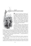 Приключения Гекльберри Финна — фото, картинка — 10