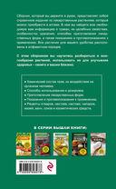 Травы из аптеки. Описание и применение 170 лекарственных растений для здоровья всей семьи — фото, картинка — 16
