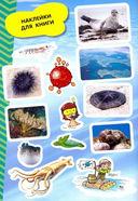 Моря и океаны. Мой атлас с наклейками — фото, картинка — 5
