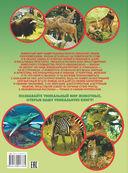 Животные планеты — фото, картинка — 9