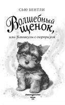 Волшебный щенок, или Каникулы с сюрпризом — фото, картинка — 3