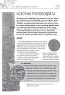Большая энциклопедия пчеловода — фото, картинка — 8